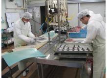食品加工場での魚調理
