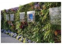 新開発商品を利用した壁面緑化の提案営業、東京オフィスでの勤務