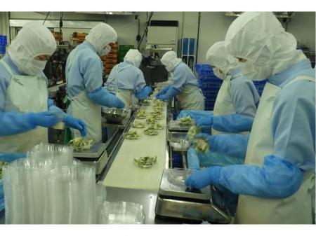 一般事務または生産管理や食品製造の2職種同時募集