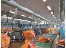 袋状製品のたたみや梱包作業