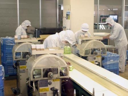 【平成31年2月末までの短期】食品製造ラインでの原料投入・製品の箱詰め作業