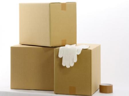 食品トレーの包装や箱詰めなどの工場内作業