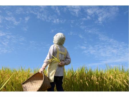 穀物の乾燥・調整機の総合メーカーでの納品・組立サービススタッフ